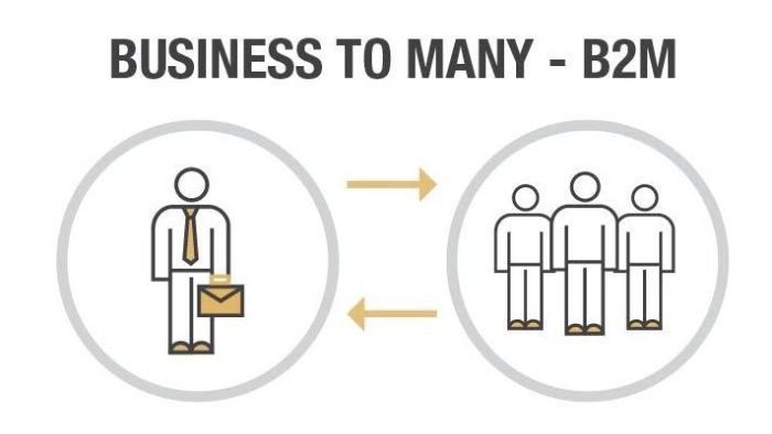 business-to-many-b2m