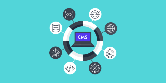 why-need-cms